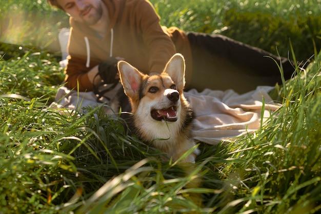 Feche o homem com o cachorro na natureza