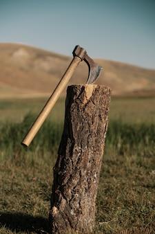 Feche o machado em um tronco na montanha