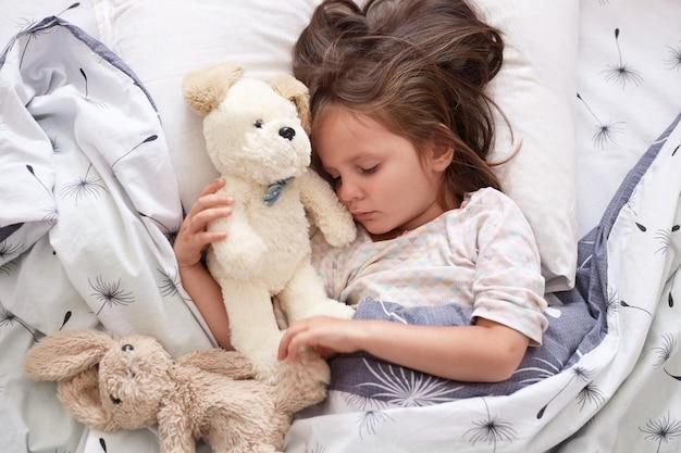 Feche o retrato da linda menina bonitinha dormindo pacificamente e abraçando seus brinquedos de pelúcia na cama, encantadora criança com os olhos fechados