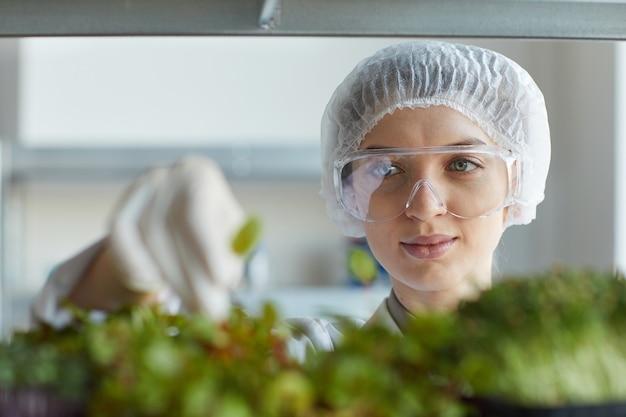 Feche o retrato de uma cientista examinando amostras de plantas enquanto trabalhava no laboratório de biotecnologia, copie o espaço