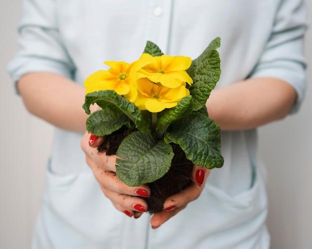 Feche o vaso de flores
