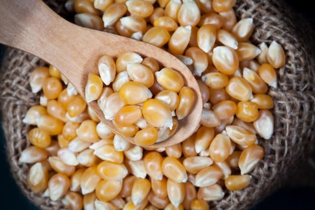 Feche os grãos de milho secos em sacos de colher e cânhamo de madeira, tire uma foto na vista superior.