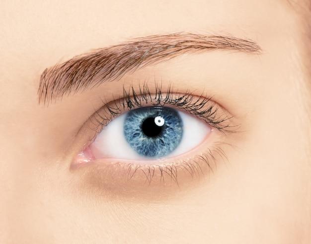 Feche os olhos azuis com maquiagem