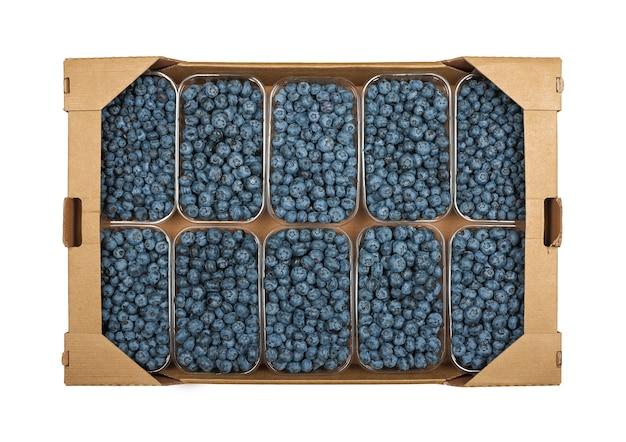 Feche uma caixa de papelão marrom com vários recipientes de plástico de frutas frescas de mirtilo maduras, isoladas no fundo branco, vista superior elevada, diretamente acima