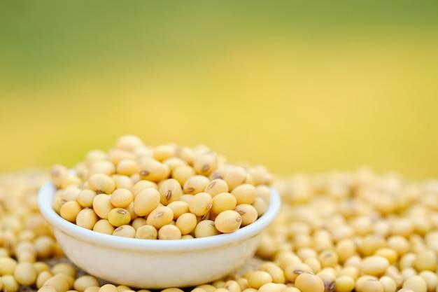 Feijão de soja em uma tigela com espaço para texto. close-up de soja. feijão seco no prato