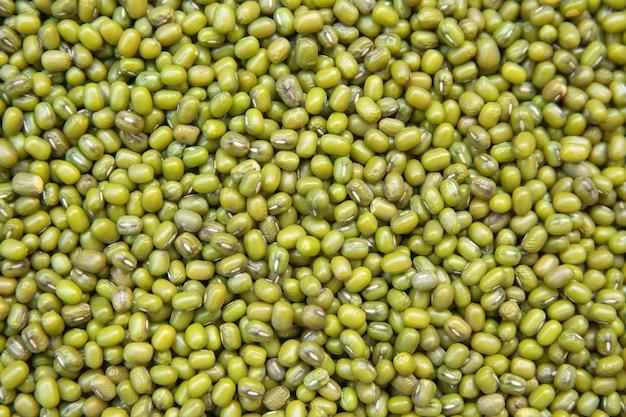 Feijão mungo ou fundo de feijão verde