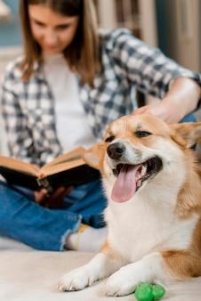 Feliz cão e mulher lendo livro no sofá
