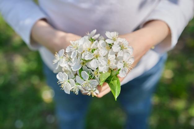 Feliz dia das mães, flores de cerejeira brancas nas mãos da menina criança