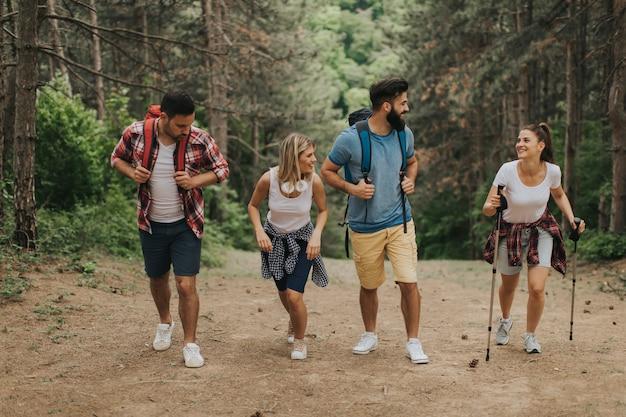 Feliz, jovem, grupo, hiking, junto, através, a, floresta