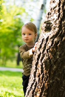 Feliz, menino, atrás de, um, árvore