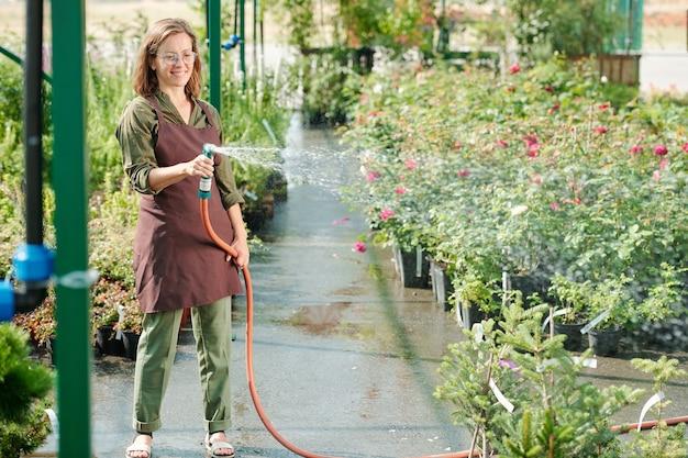Feliz morena feminina jardineira em óculos e roupas de trabalho regando plantas verdes em uma estufa em pé entre grandes canteiros de flores