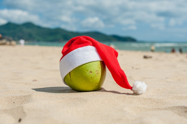 Feliz natal e feliz ano novo na praia verão. coco com chapéu de papai noel. palmas das mãos e céu azul no fundo