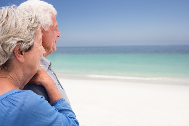 Feliz, par velho, olhando mar