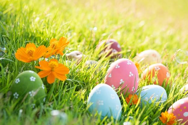 Feliz páscoa! ovos de páscoa coloridos closeup no campo de grama verde durante o pôr do sol