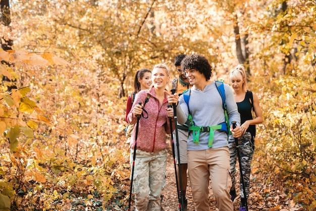 Feliz pequeno grupo de caminhantes que exploram a floresta no outono.