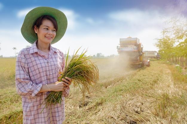 Feliz, tailandês, agricultor, mulher segura, foice, e, colheitas, arroz, com, colheita, car, em, fazenda campo