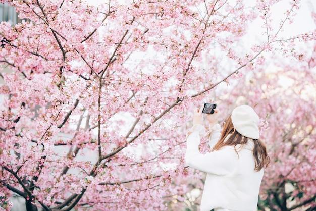 Feliz viajar mulher e tirar uma foto da árvore de flores de cerejeira sakura de férias durante a primavera