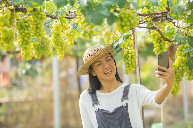 Fêmea no jardim usando telefone celular para anotar pedidos de sua uva.
