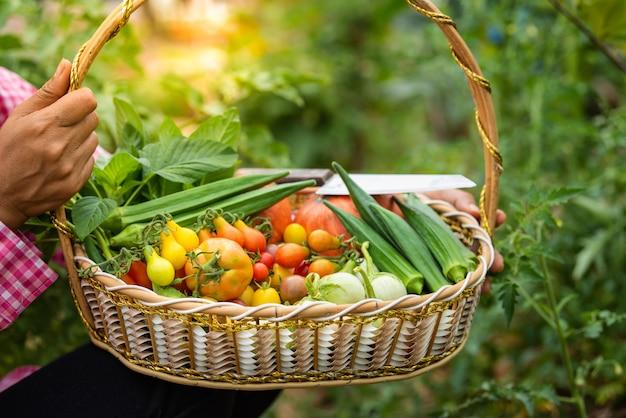 Femininas, colher, diferente, legumes frescos, orgânica, em, jardim