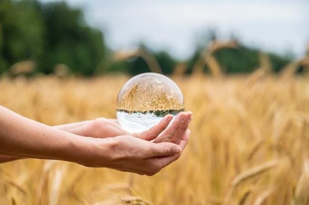 Femininas mãos segurando uma esfera de cristal sobre um campo de trigo