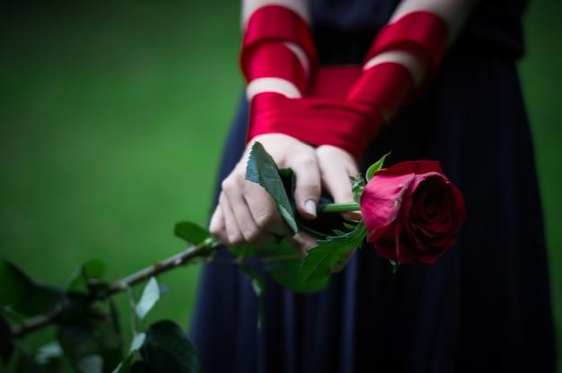 Femininas mãos segurando uma rosa