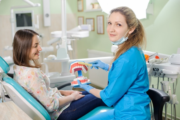 Femininas, odontólogo, mostrando, dental, mandíbula, modelo, para, mulher, paciente, em, odontólogo's, clínica