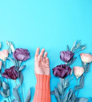 Feminino mão em um suéter rosa brilhante sobre um fundo azul no meio de flores frescas