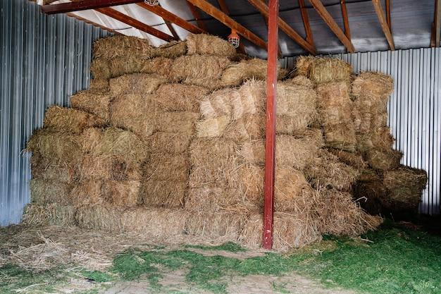 Feno em fardos sob um dossel para fornecer ao gado ração de alta qualidade