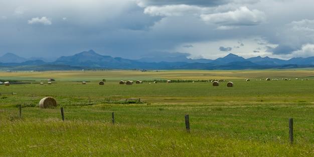 Feno, pacotes, em, fazenda, com, montanhas, em, fundo, pincher, riacho, sulista, alberta, alberta, canadá