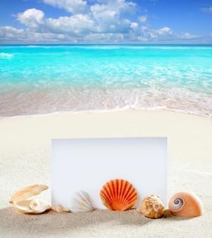 Férias de praia areia pérola conchas caracol papel em branco