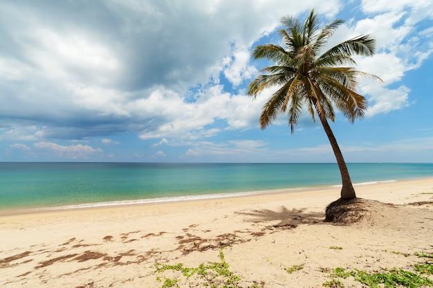 Férias de verão e conceito de fundo de férias