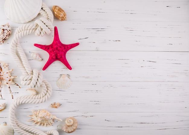 Férias de verão mar fundo branco de madeira com peixe estrela, cabo marinho e espaço de cópia