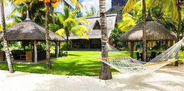 Férias tropicais relaxantes com rede sob uma palmeira. ilha maurícia