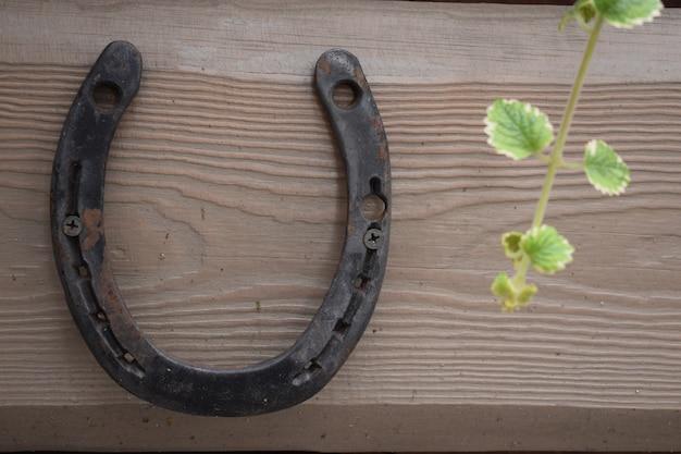 Ferradura oxidada antiga fixada em pregos na superfície de madeira velha.