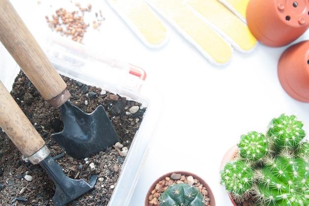 Ferramentas de jardim com vaso de cactos no fundo branco