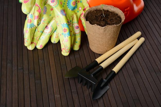 Ferramentas de jardim e um vaso de turfa com mudas