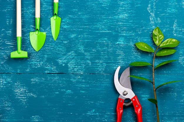 Ferramentas de jardim na mesa podador de cuidados de plantas e broto de árvore na mesa