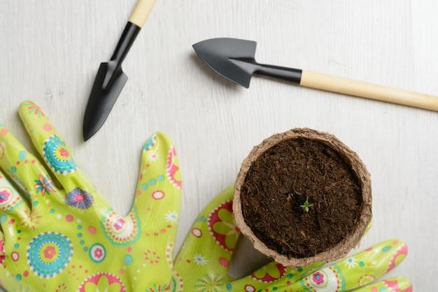 Ferramentas de jardim para plantar
