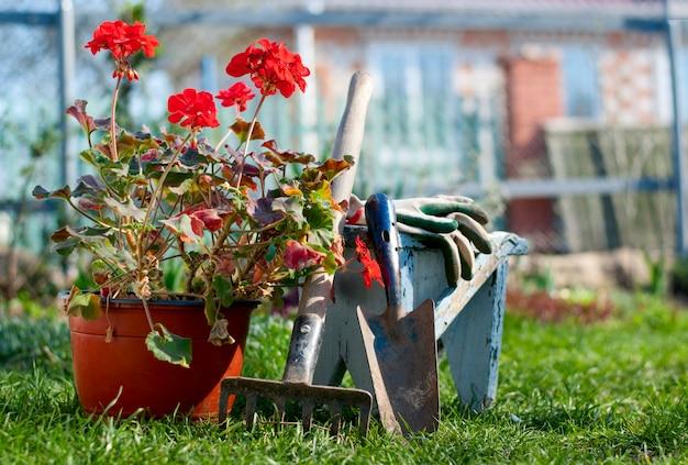 Ferramentas de jardim
