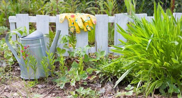 Ferramentas de jardinagem ao ar livre no jardim