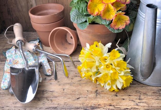 Ferramentas de jardinagem com narcisos e vaso de flores em fundo de madeira rústico