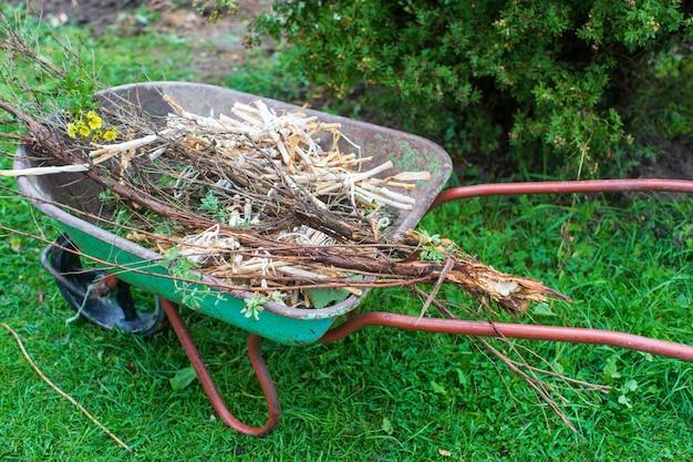 Ferramentas de jardinagem. conceito agrícola. época de cultivo. carrinho de mão com galhos.
