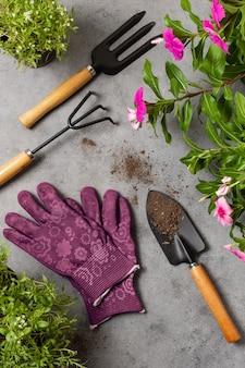 Ferramentas de jardinagem de plantas close-up vista superior