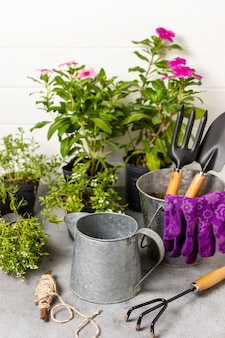 Ferramentas de jardinagem de plantas close-up