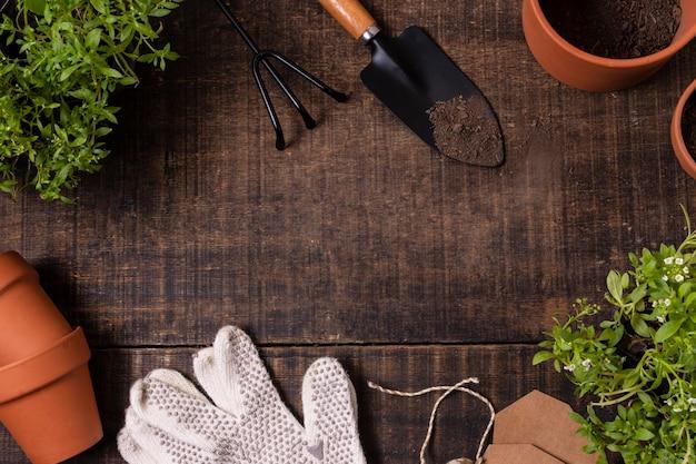 Ferramentas de jardinagem de plantas fecham o quadro