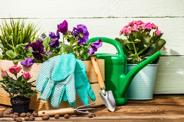 Ferramentas de jardinagem e flores no terraço do jardim