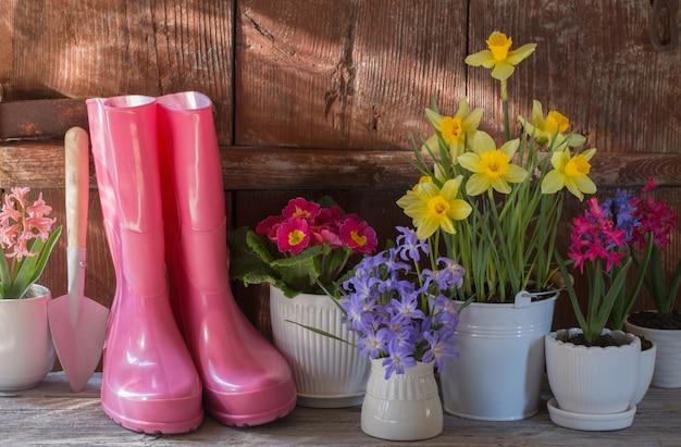 Ferramentas de jardinagem e primavera flores sobre fundo de madeira