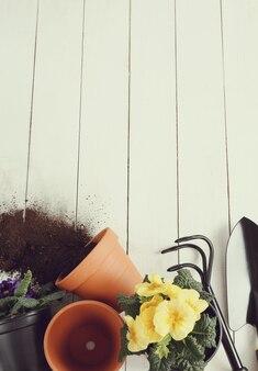 Ferramentas de jardinagem e vaso de flores sobre fundo de madeira