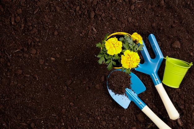 Ferramentas de jardinagem em fundo de textura de solo fértil, visto de cima, vista superior. conceito de jardinagem ou plantio.