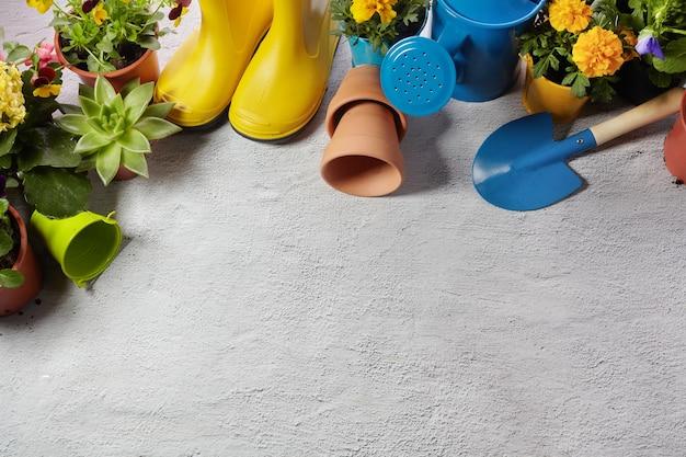 Ferramentas de jardinagem, flores e regador na calçada. conceito de obras de jardim de primavera. layout com espaço livre capturado de cima. vista superior, configuração plana.